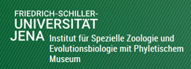 Beutel_logo_Uni